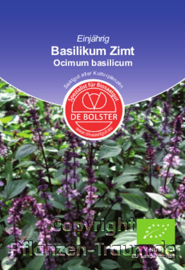 basilikum zimt ocimum basilicum de bolster bio samen gew rzkraut k chenkraut pflanzen. Black Bedroom Furniture Sets. Home Design Ideas