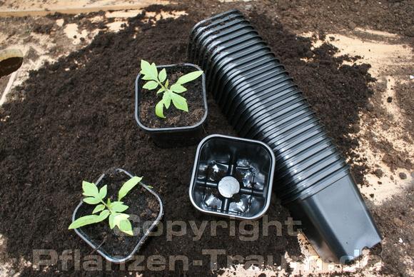 Fabulous Pflanztöpfe 7cm x 7cm x 8cm viereckig 50 Stück | Pflanzen-Traum.de OX86